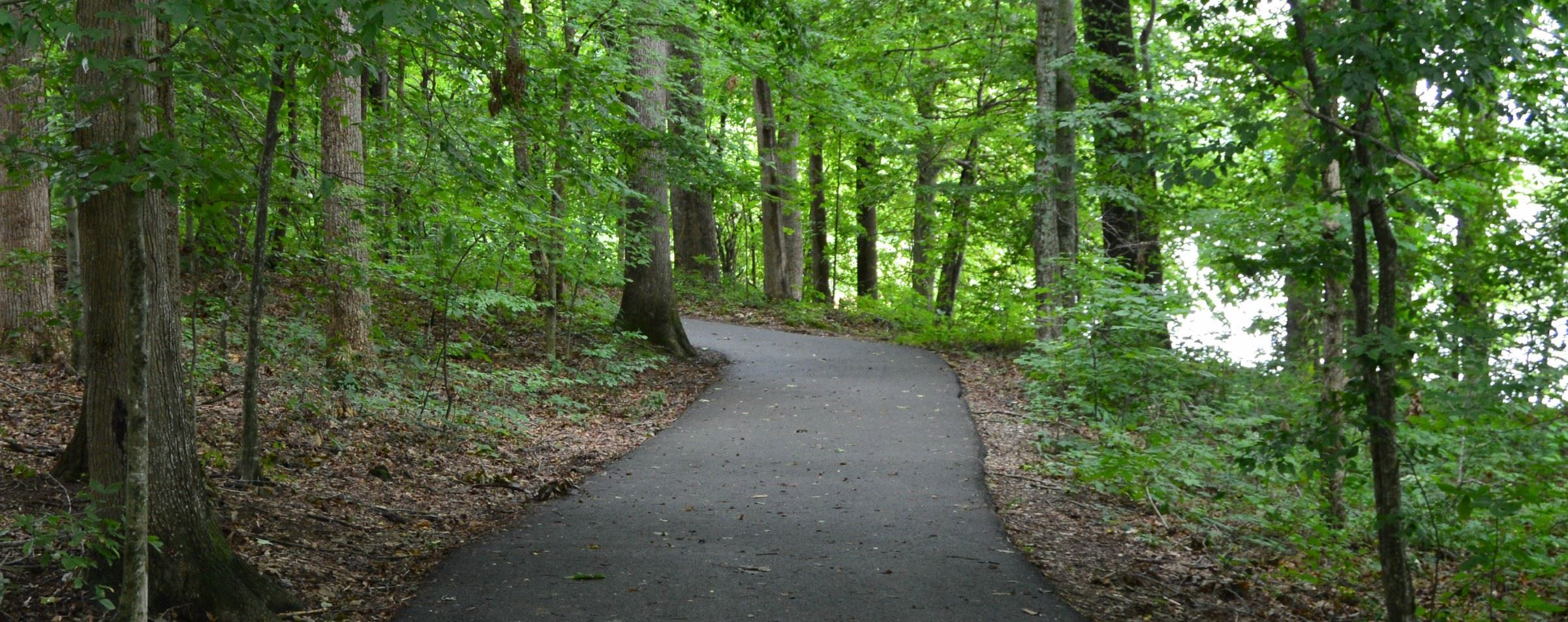 Cane Creek Park Trail